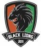 CAMPIONI D'ITALIA!!!!!!!!!! I BLACK LIONS CONQUISTANO IL TITOLO